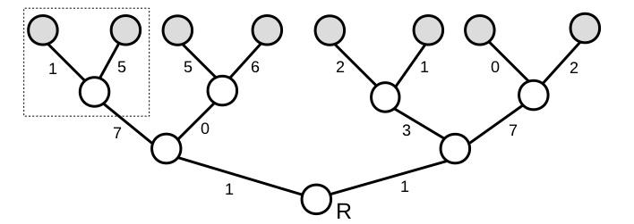 Tree_Practice_b_box.jpg